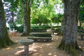 Quinta da Cerca - arvores centenárias